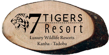 7 Tigers Resort